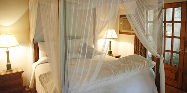 Room: Garden Suite