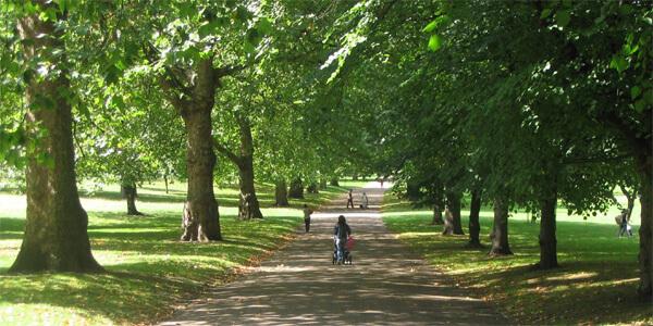 Activity: Hyde Park