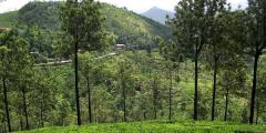 Other places to stay in Kerala